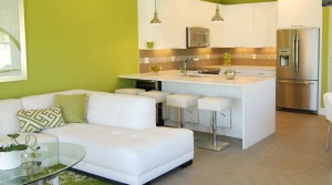 Serenity Townhomes Clermont by Zenodro