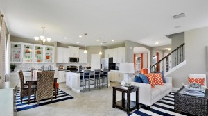 Serenoa by Ryan Homes