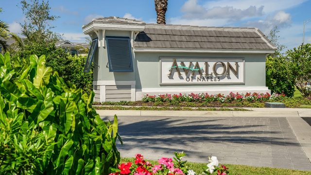 Naples New homes for sale at Avalon in Naples